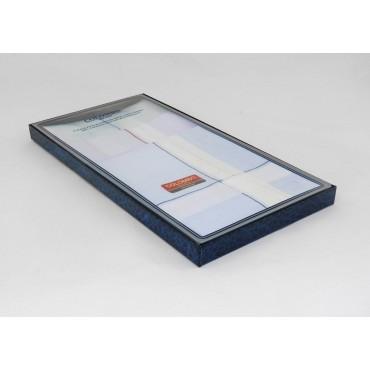 Scatola laterale - Versailles - fazzoletti di cotone da uomo con incroci di spesse righe di raso su fondo pastello
